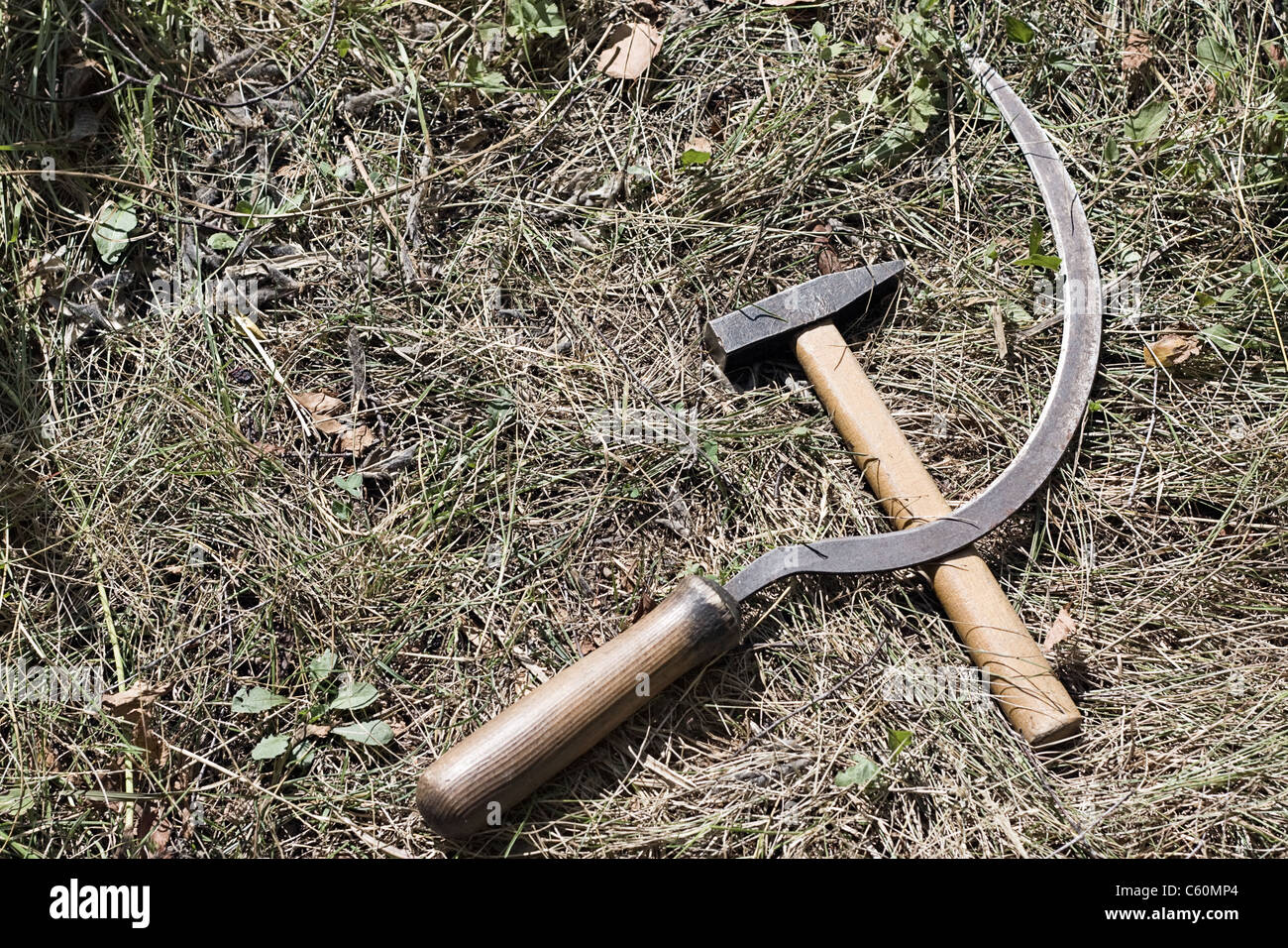 Sickle and hammer on the field - Stock Image