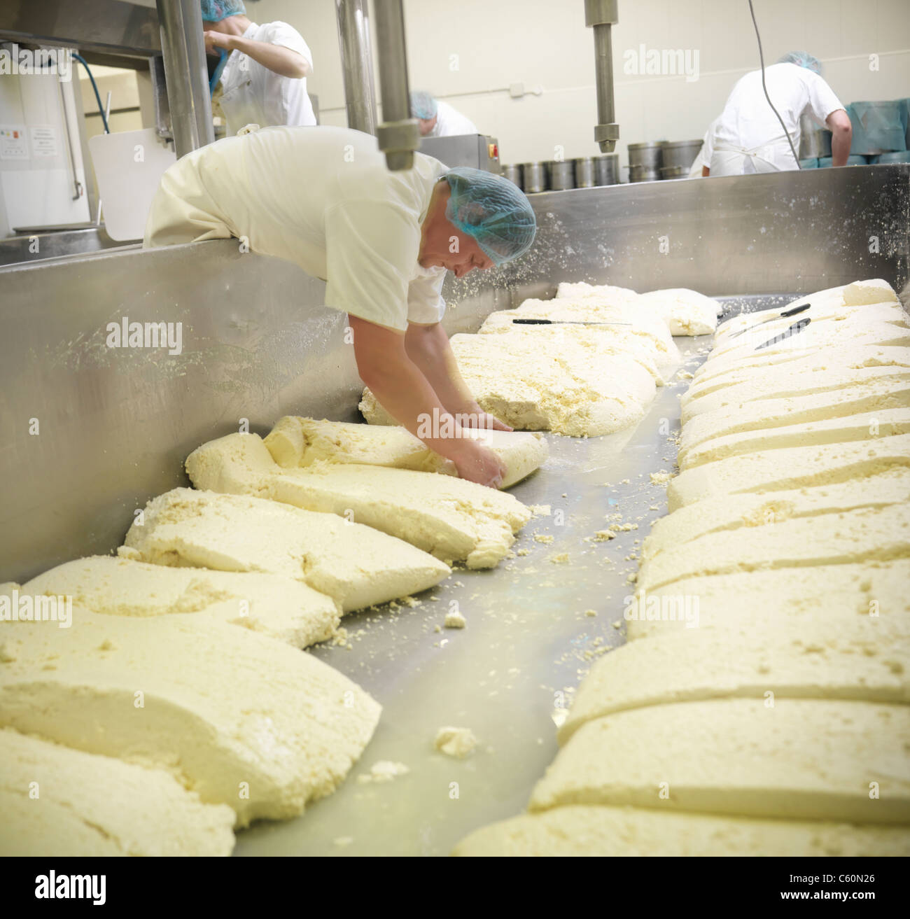 Worker making cheese in factory - Stock Image