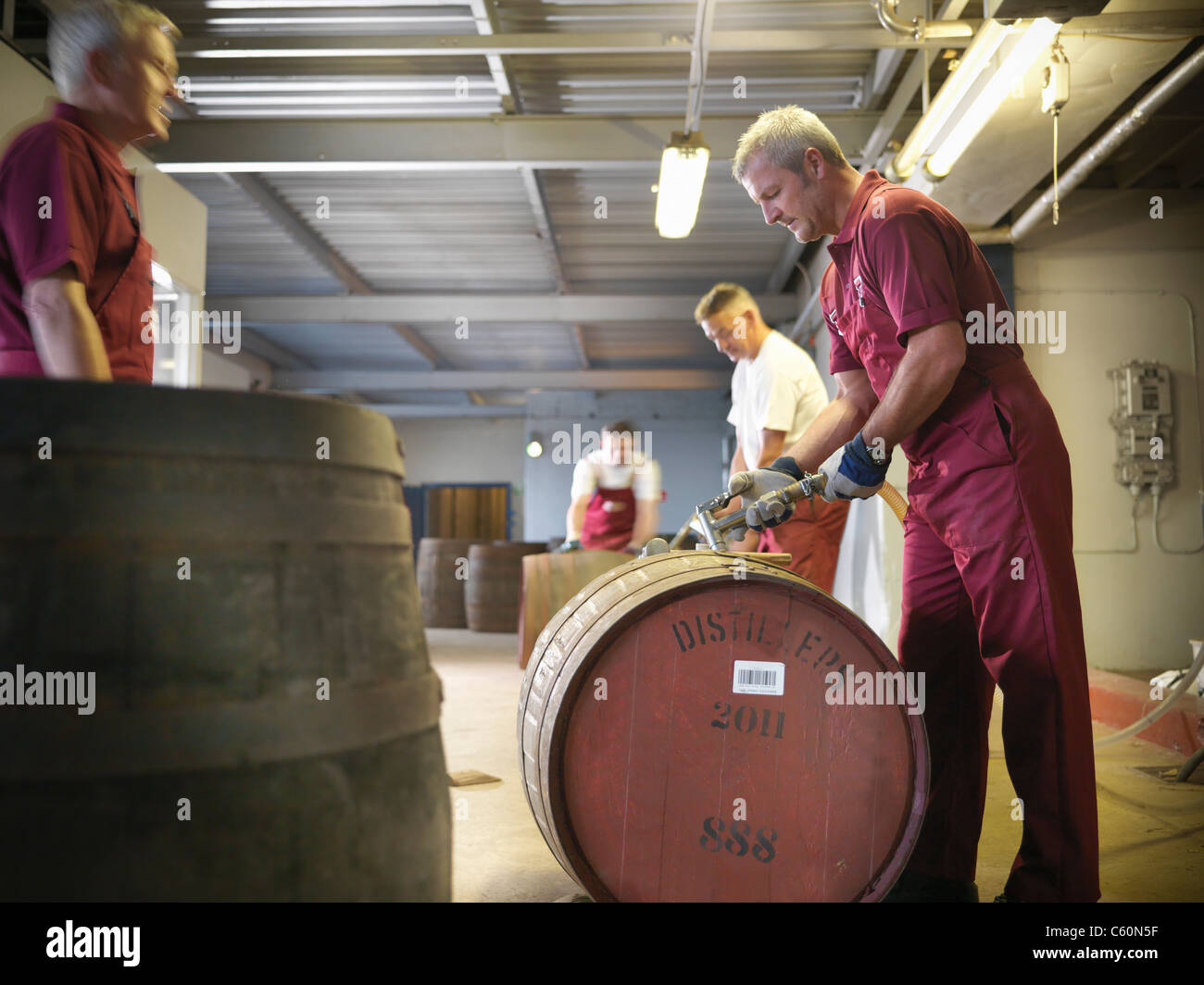 Worker with whisky barrel in distillery - Stock Image
