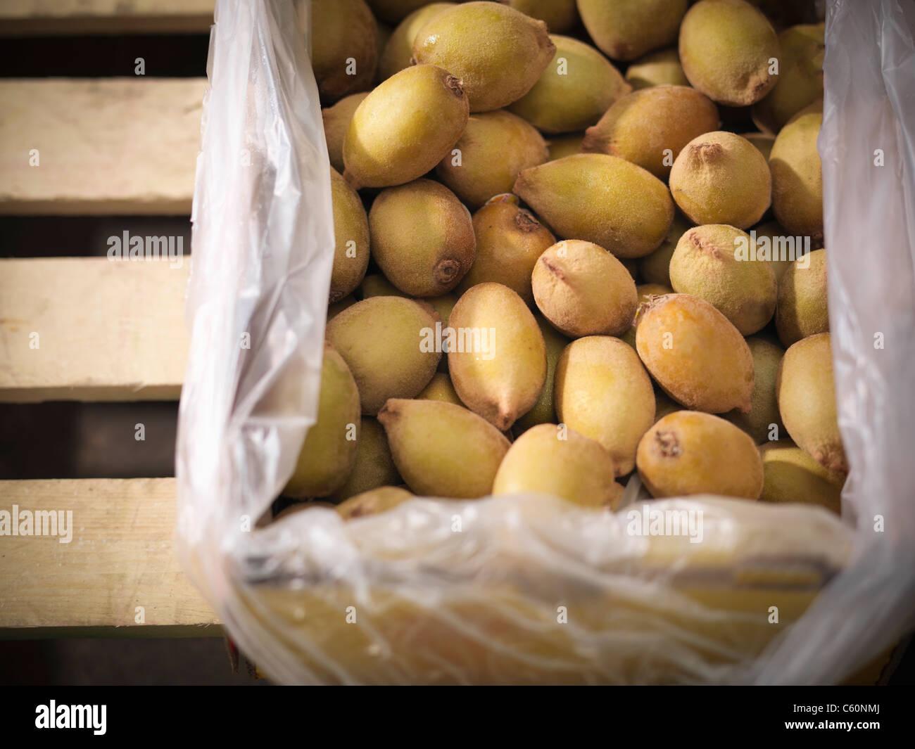 Close up of box of golden kiwi - Stock Image