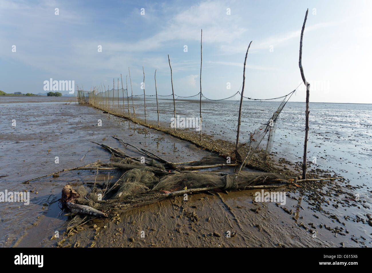 view of estuary in krabi river at low tide, krabi, thailand Stock Photo