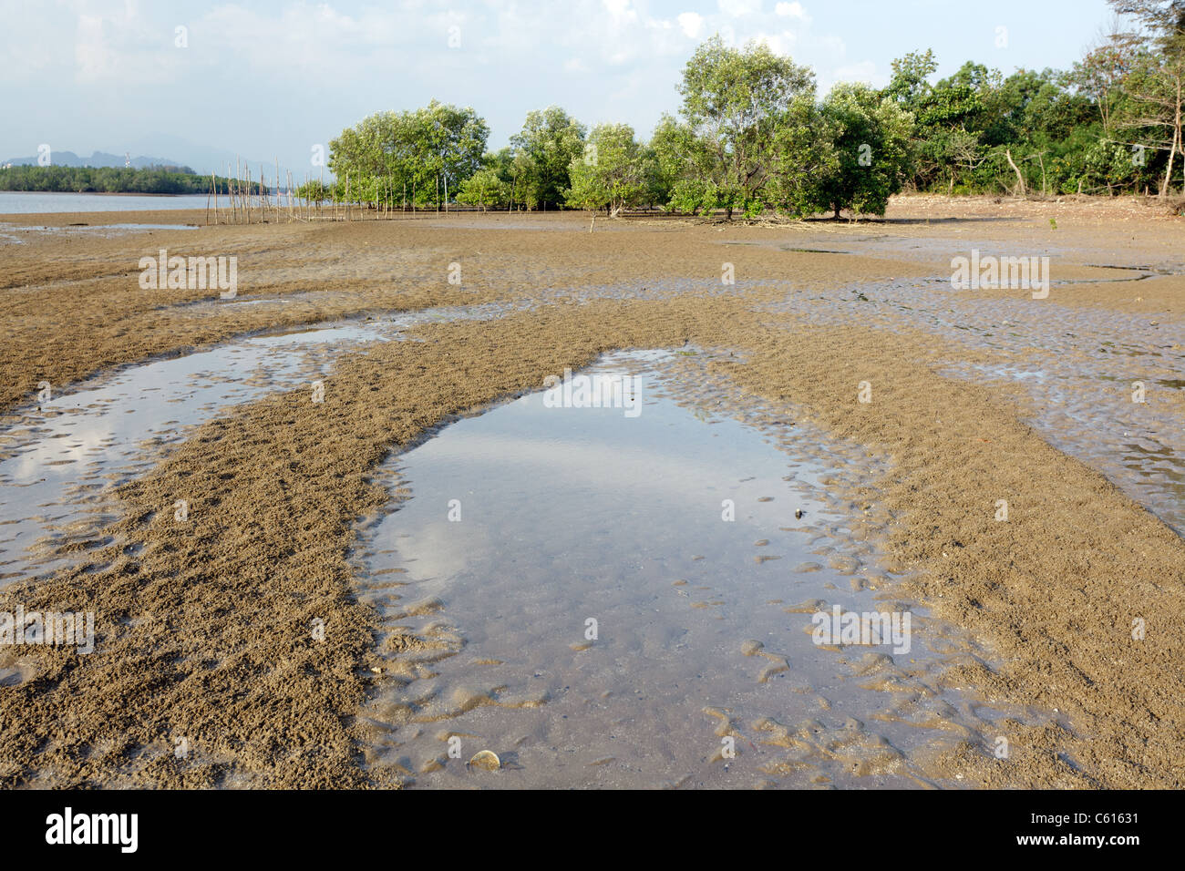 view of estuary in krabi river at low tide, krabi, thailand Stock Photo