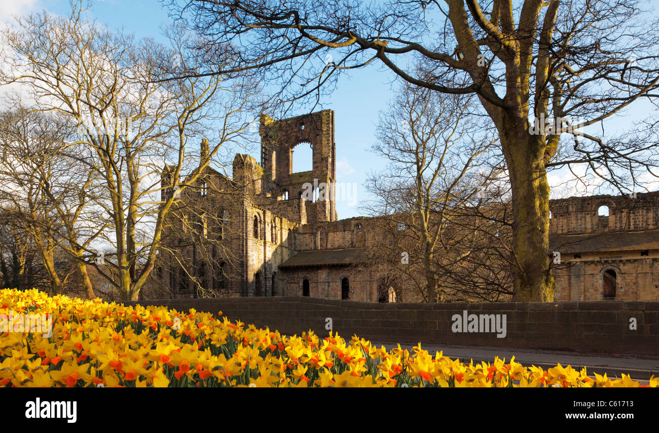kirkstall abbey leeds in spring Stock Photo