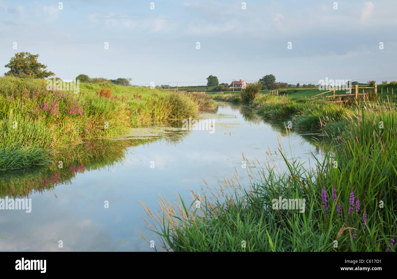 River Adur, Partridge Green, West Sussex, England, UK Stock Photo