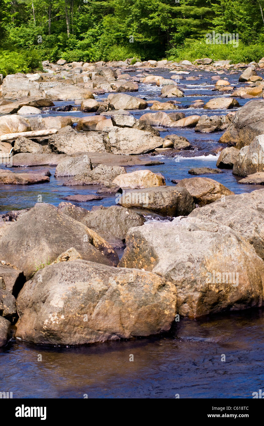 Wooded stream with many rocks and babbling water - Stock Image