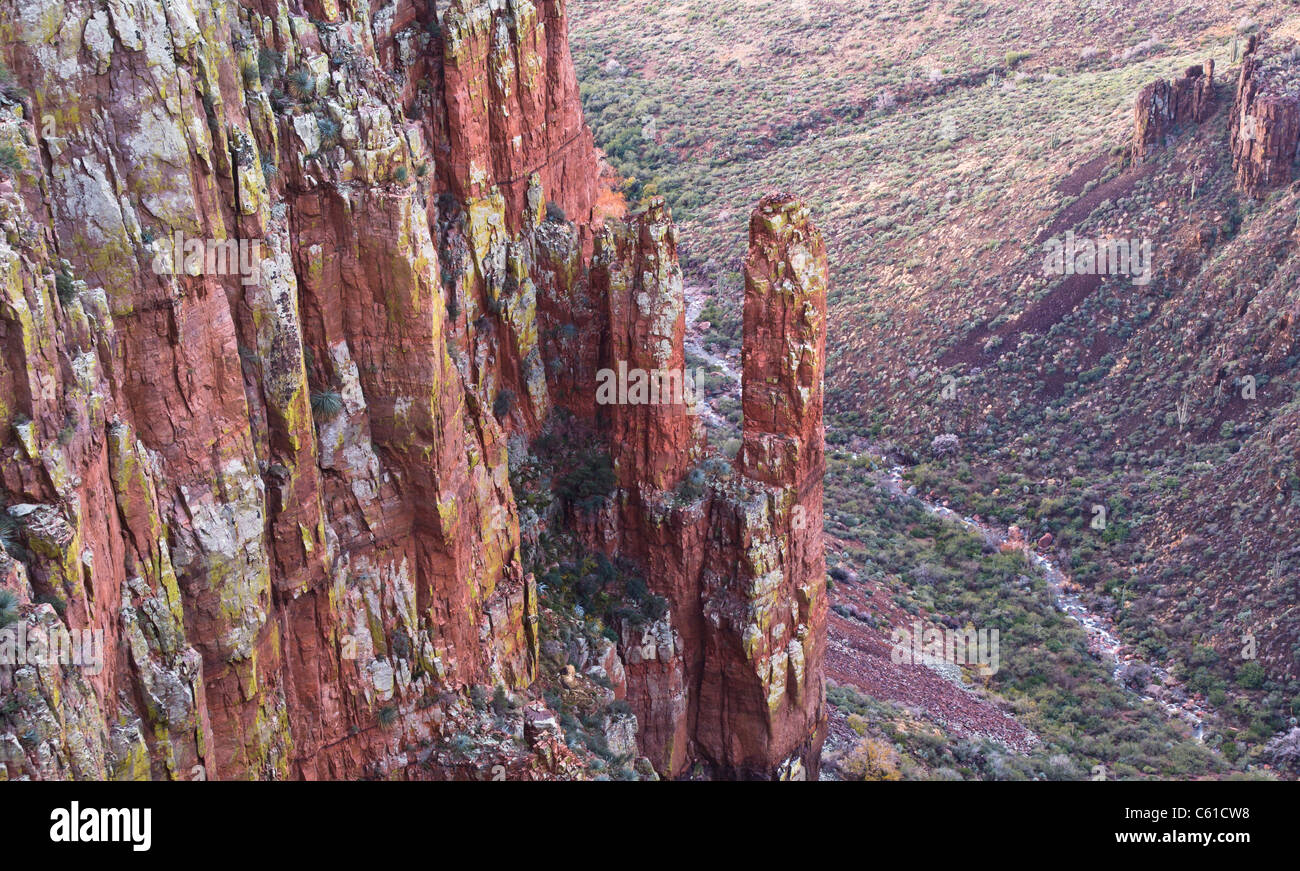 Early morning light finds it's way to the bottom of the Parker Creek Cliffs area. Tonto National Forest near - Stock Image