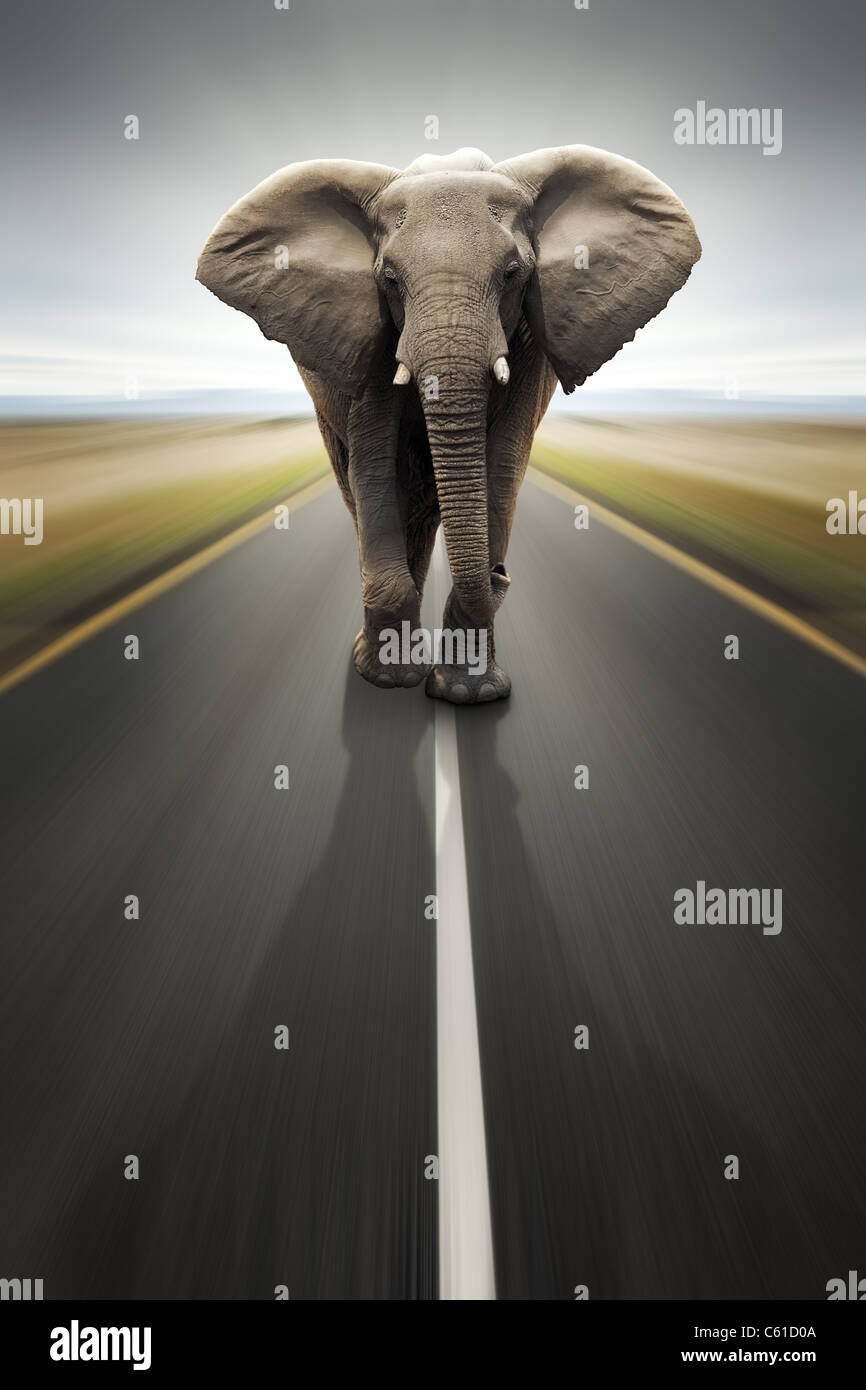 Conceptual - Heavy duty transport / travel by road (Digital composite) - Stock Image