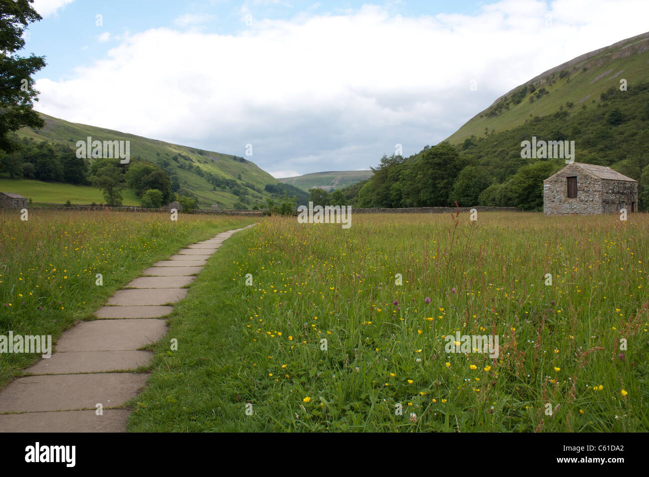 Flagged stone footpath through hay meadows and typical Dales stone field barn near Muker, Swaledale, North Yorkshire, - Stock Image
