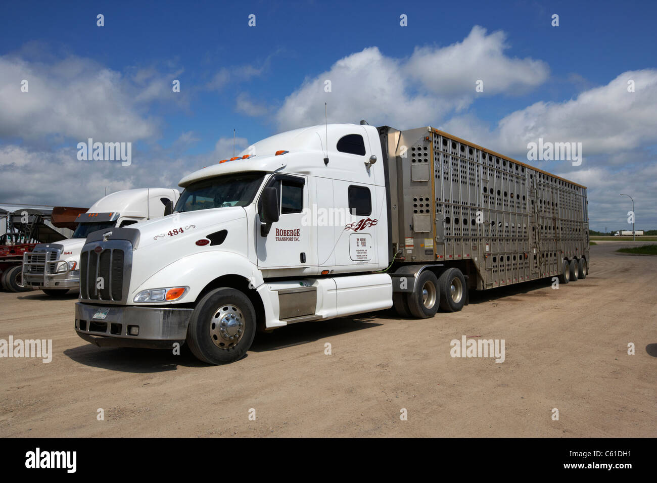 semi livestock trucks parked at truck stop parking area in rural manitoba canada - Stock Image
