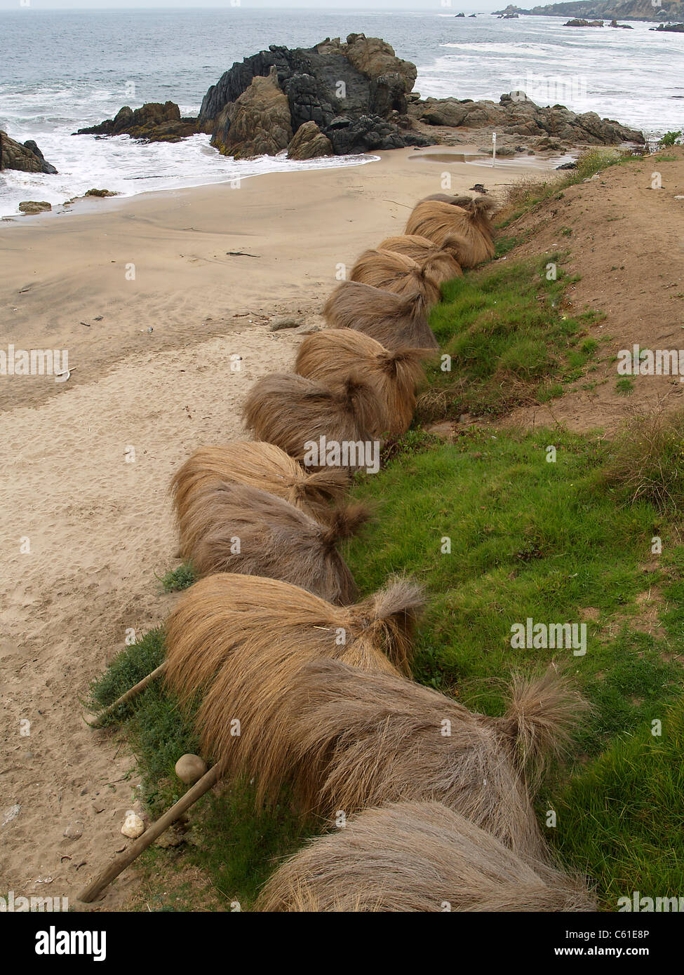 Beach umbrellas, Vina del Mar, Chile - Stock Image