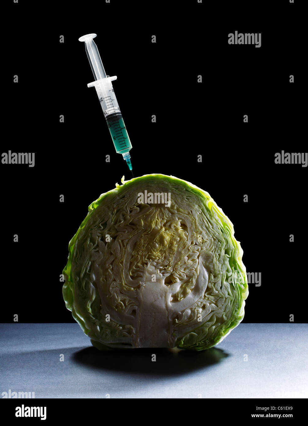 Cabbage with Hypodermic Syringe - Stock Image