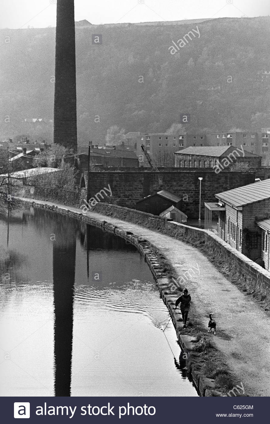 Girl with dog running beside Rochdale Canal, Sowerby Bridge, Yorkshire. She holds a stick in the water to make ripples. - Stock Image