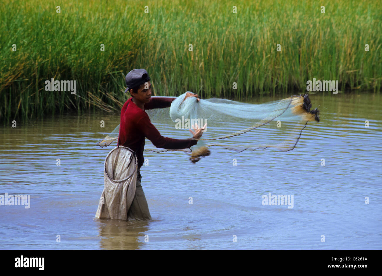 Young man in the water throwing his fishing net near Mexcaltitan Mexico - Stock Image