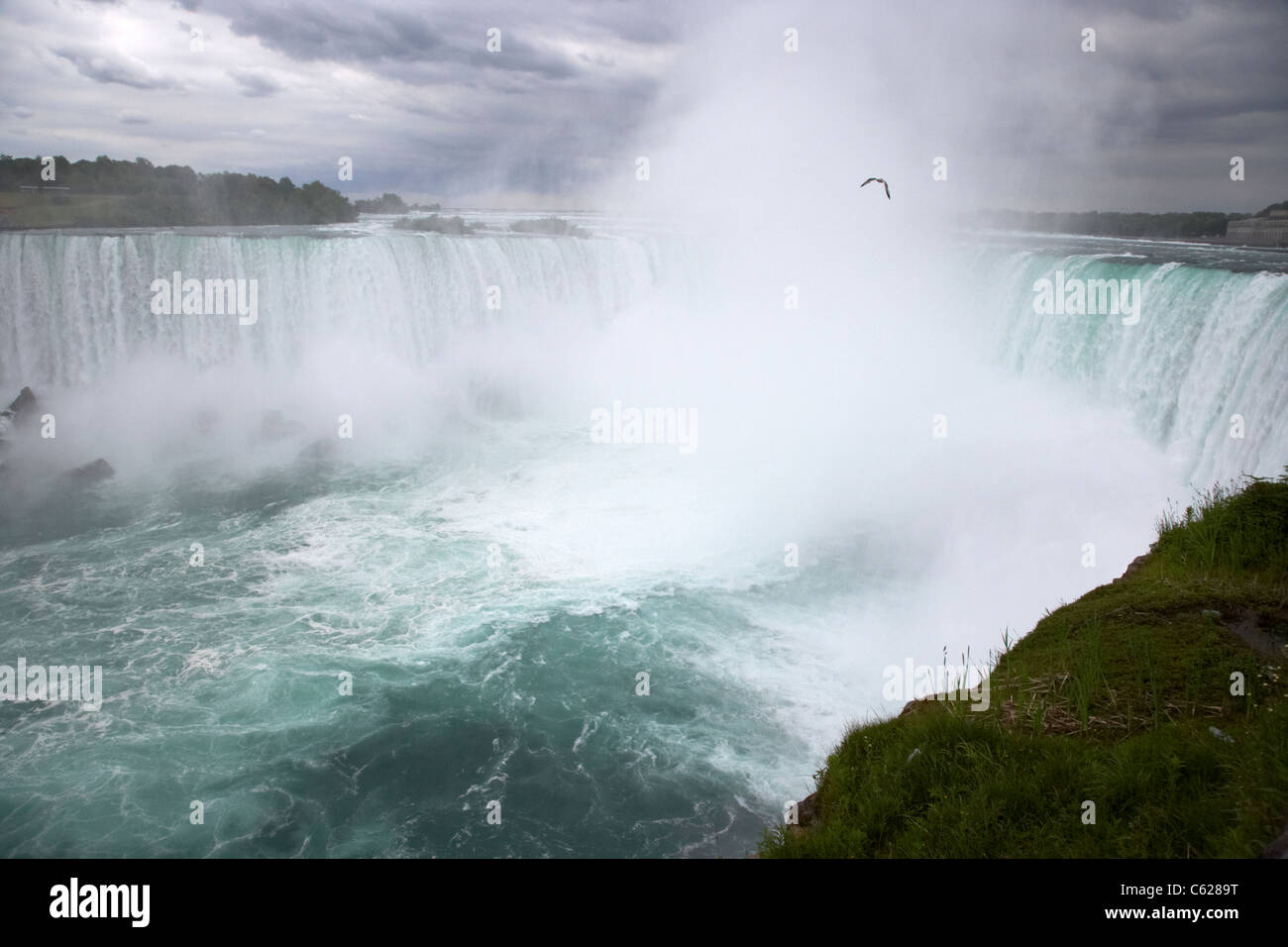 The horseshoe falls niagara falls ontario canada - Stock Image