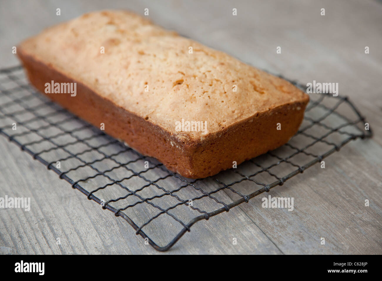 freshly baked pound cake on cooling rack - Stock Image