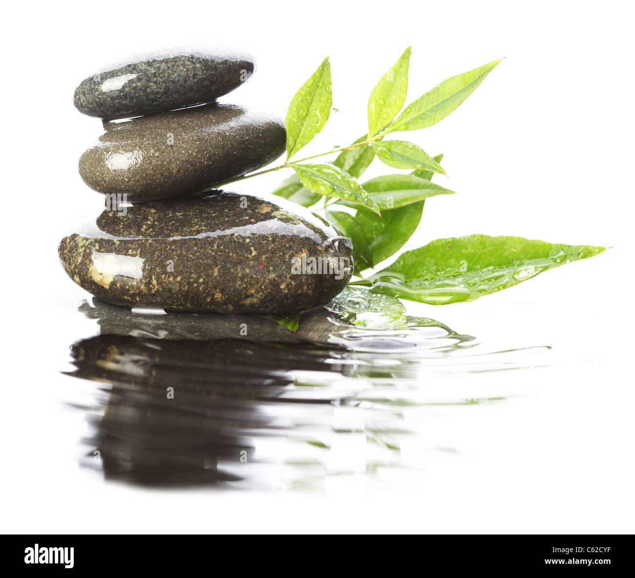 Stones In Water With Leaves Stock Photo 38162755 Alamy