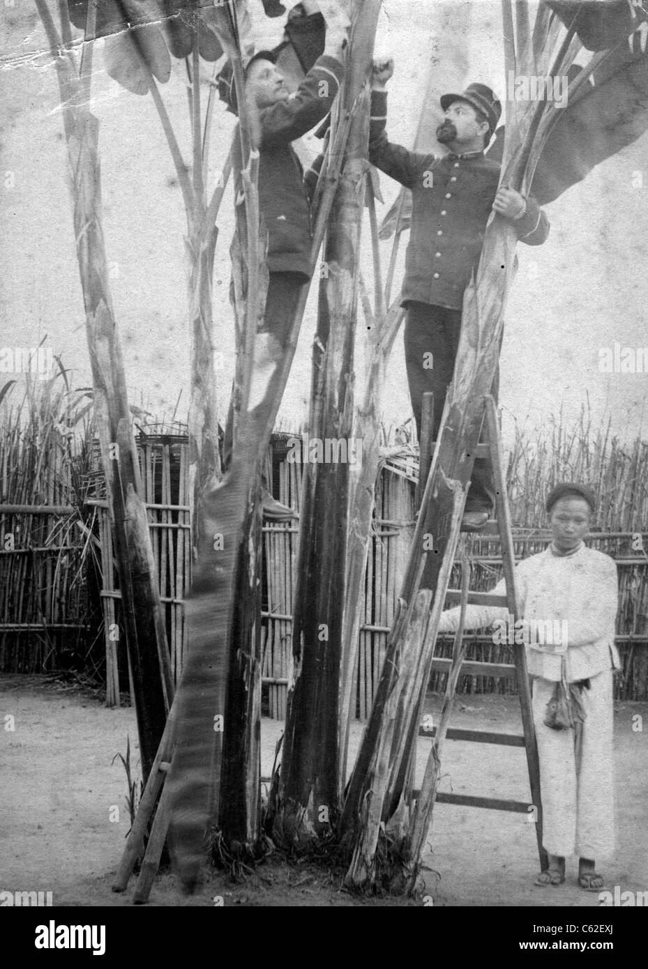 Two French soldiers work with a Vietnamese native holding the ladder for them in Vietnam or Cambodia circa 1900. - Stock Image