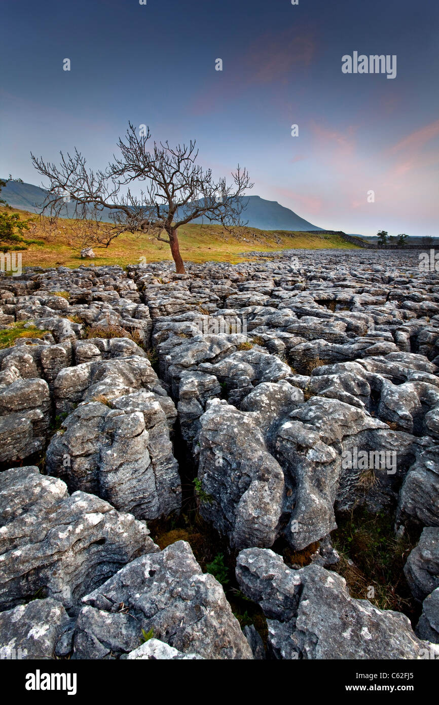 The Yorkshire Dales National Park at Dusk. Stock Photo