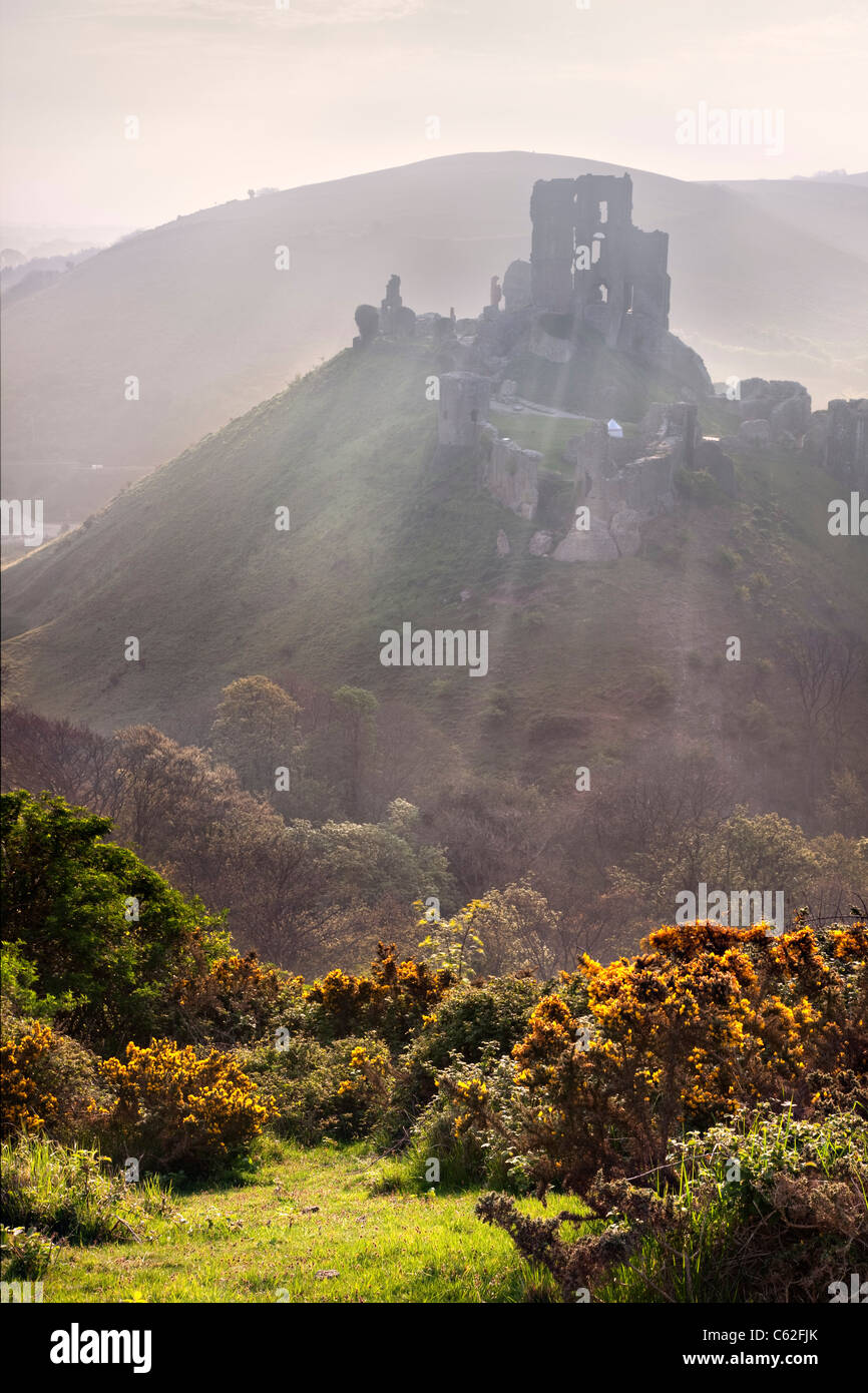 Sunrise at Corfe Castle in Dorset, England. - Stock Image