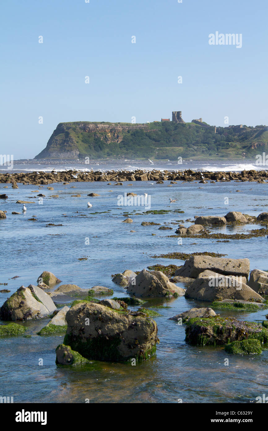 Scarborough Castle from north bay Yorkshire England - Stock Image