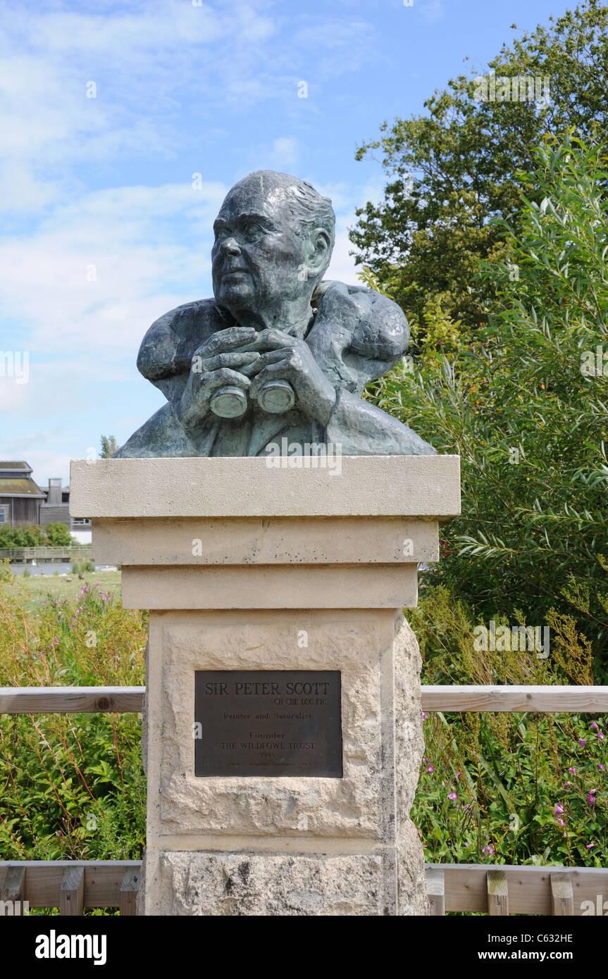 Sculpture of Sir Peter Scott at the Wildfowl and Wetlands Trust Slimbridge Gloucestershire England UK GB Stock Photo