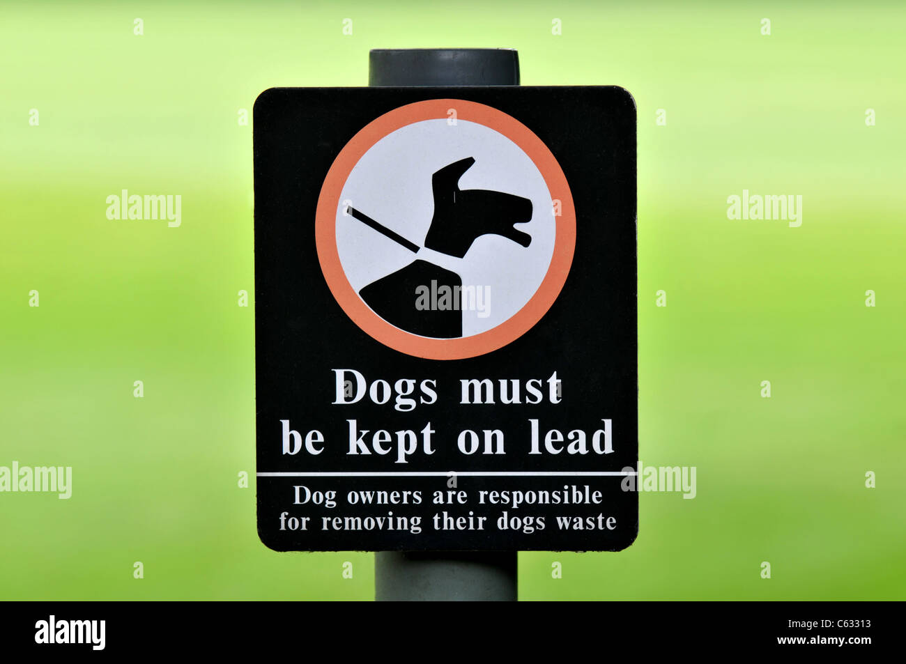 Dogs must be kept on lead sign - Stock Image