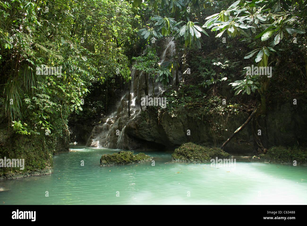 Somerset falls in Ocho Rios, Jamaica - Stock Image