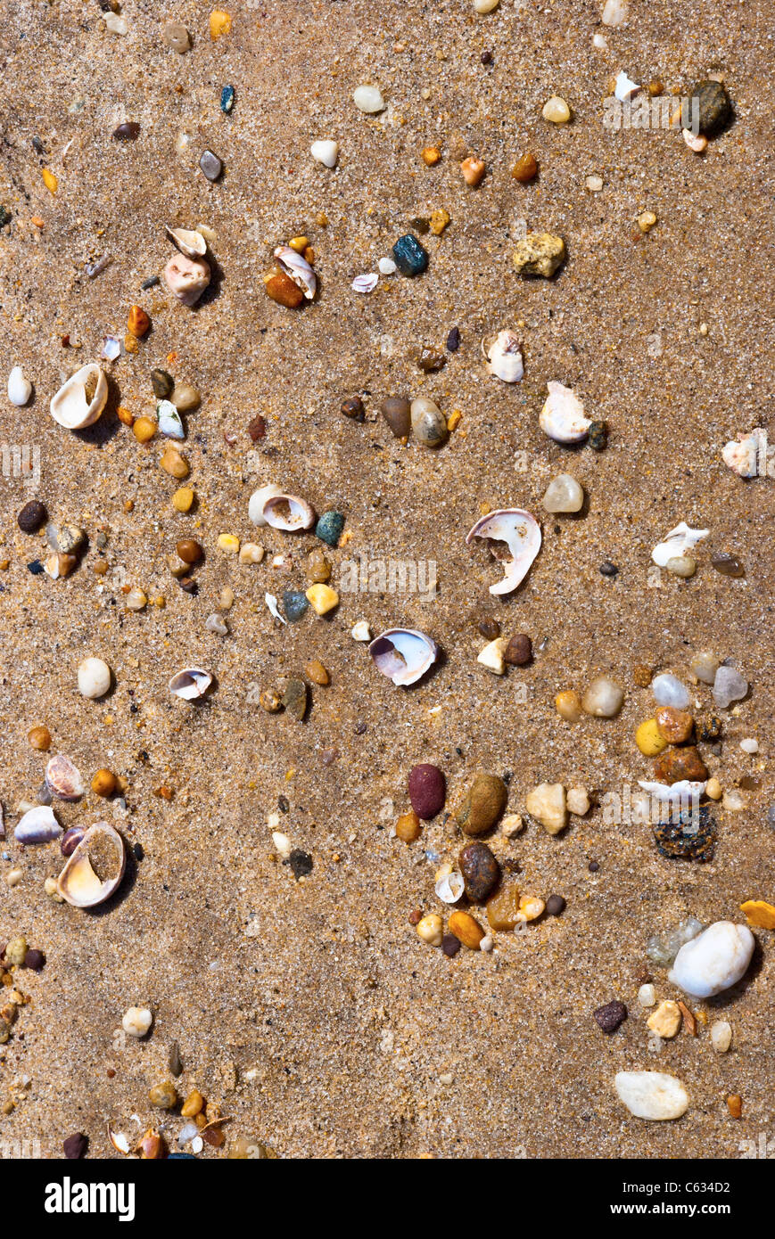 Stones, Shells, Sand Abstraction - Stock Image