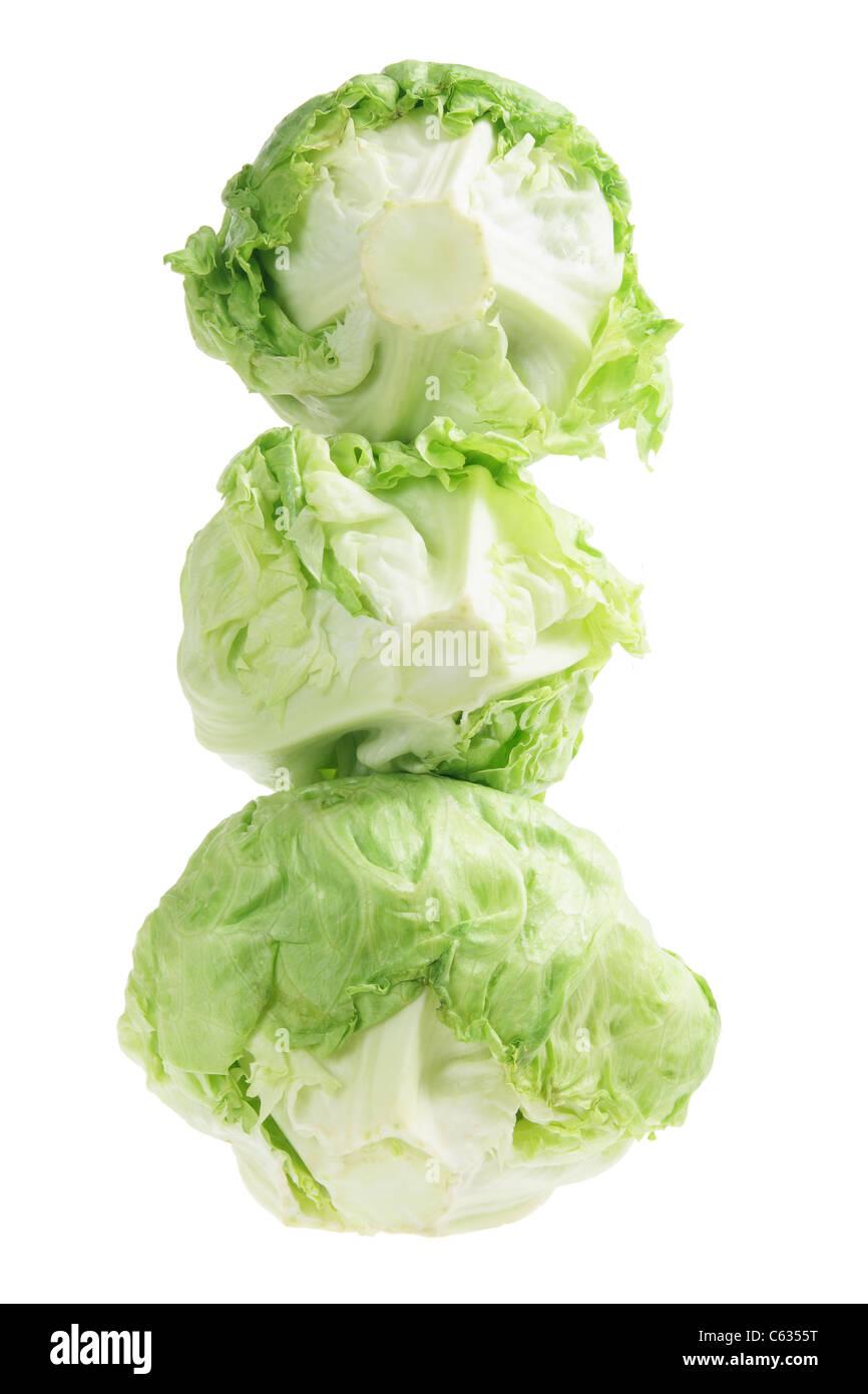 Iceberg Lettuce - Stock Image