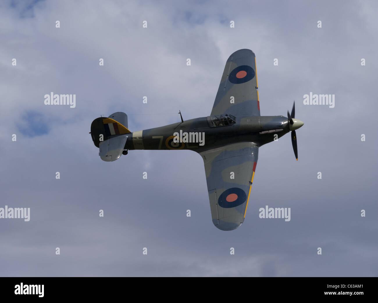 Hawker Sea Hurricane - Stock Image