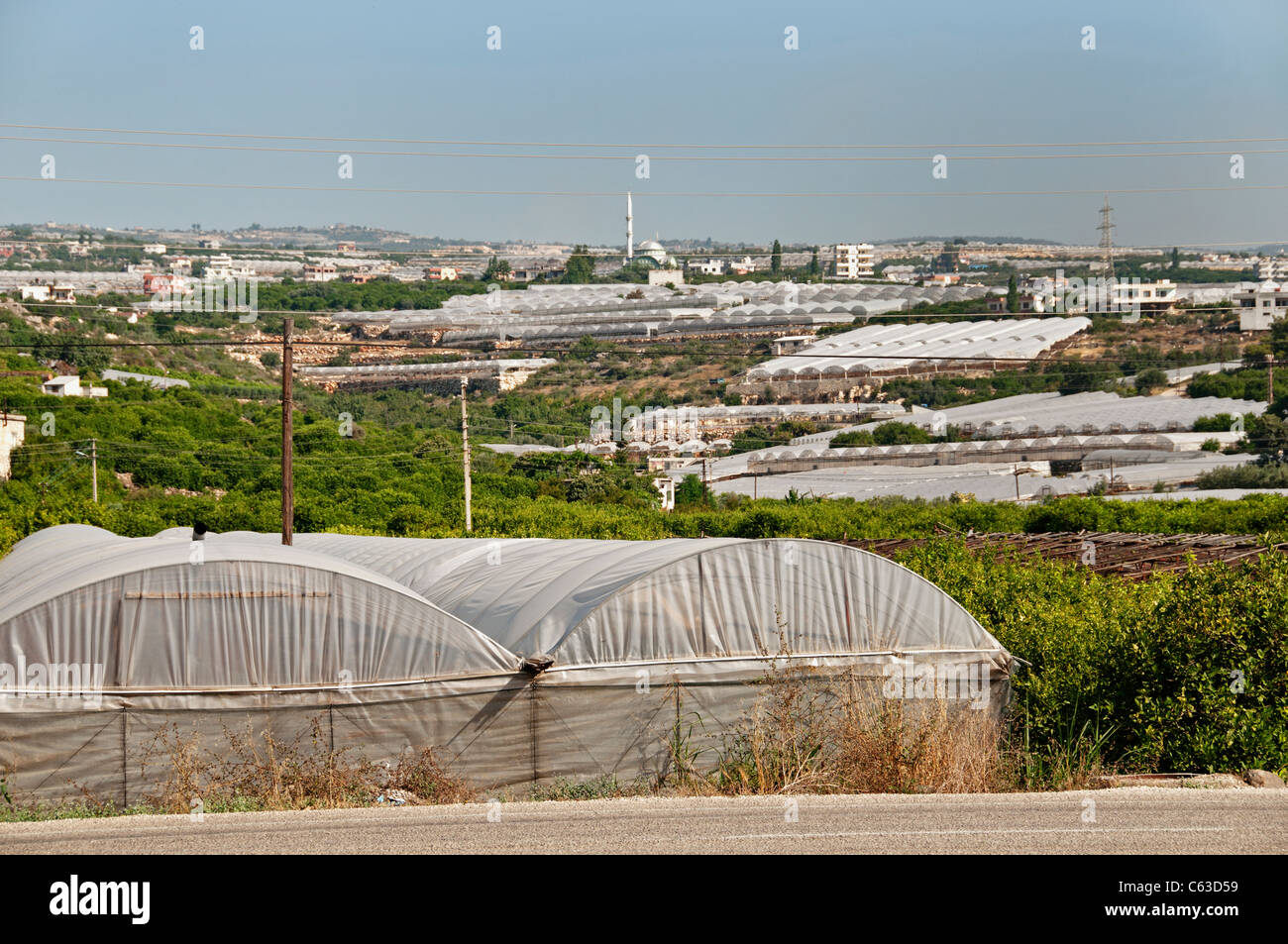 South Turkey Greenhouse Glasshouse Agriculture Farm - Stock Image