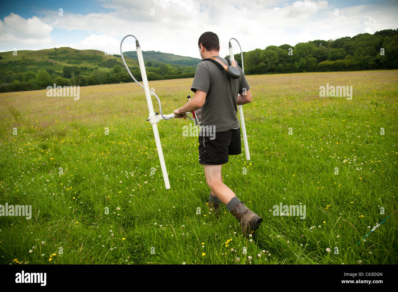 An archaeologist undertaking a geophysical survey of a likely excavation site at Strata Florida Abbey, Mid wales - Stock Image