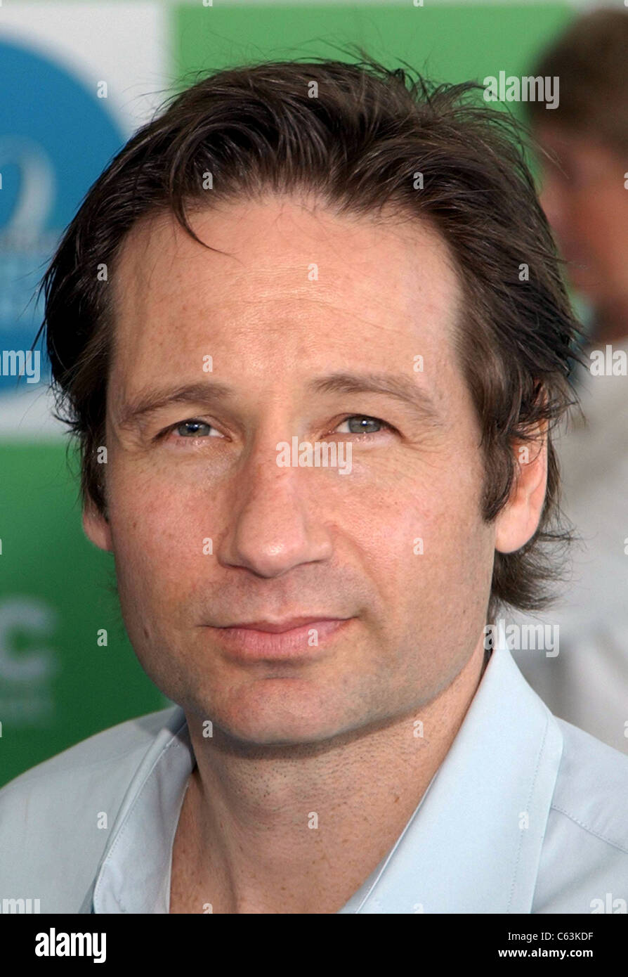 David Duchovny at arrivals for 20th IFP Independent Spirit Awards, Los Angeles, CA, Saturday, February 26, 2005. - Stock Image