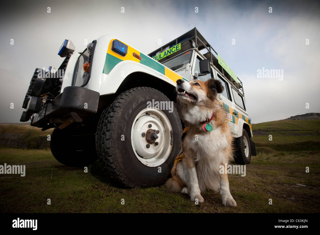A mountain rescue dog standing alongside a Mountain Rescue Land Rover Ambulance in the Brecon Beacons National Park, - Stock Image