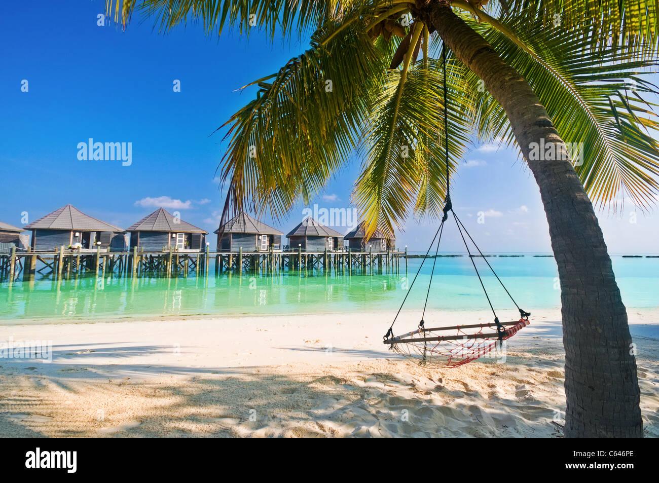 Entspannung unter Palmen Stock Photo