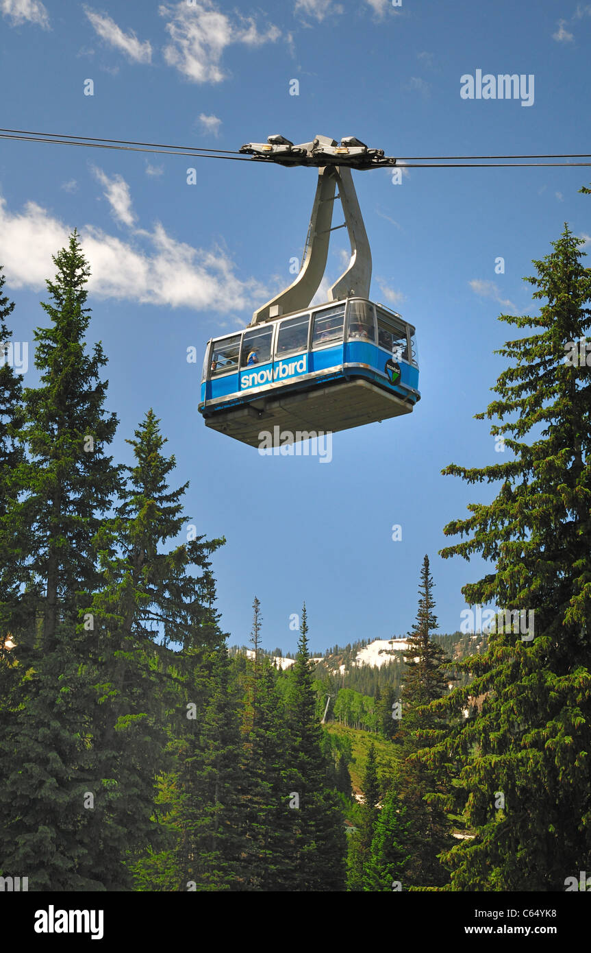 The aerial tram at Snowbird takes visitors to the top of Hidden Peak in the Wasatch Mountains - Stock Image