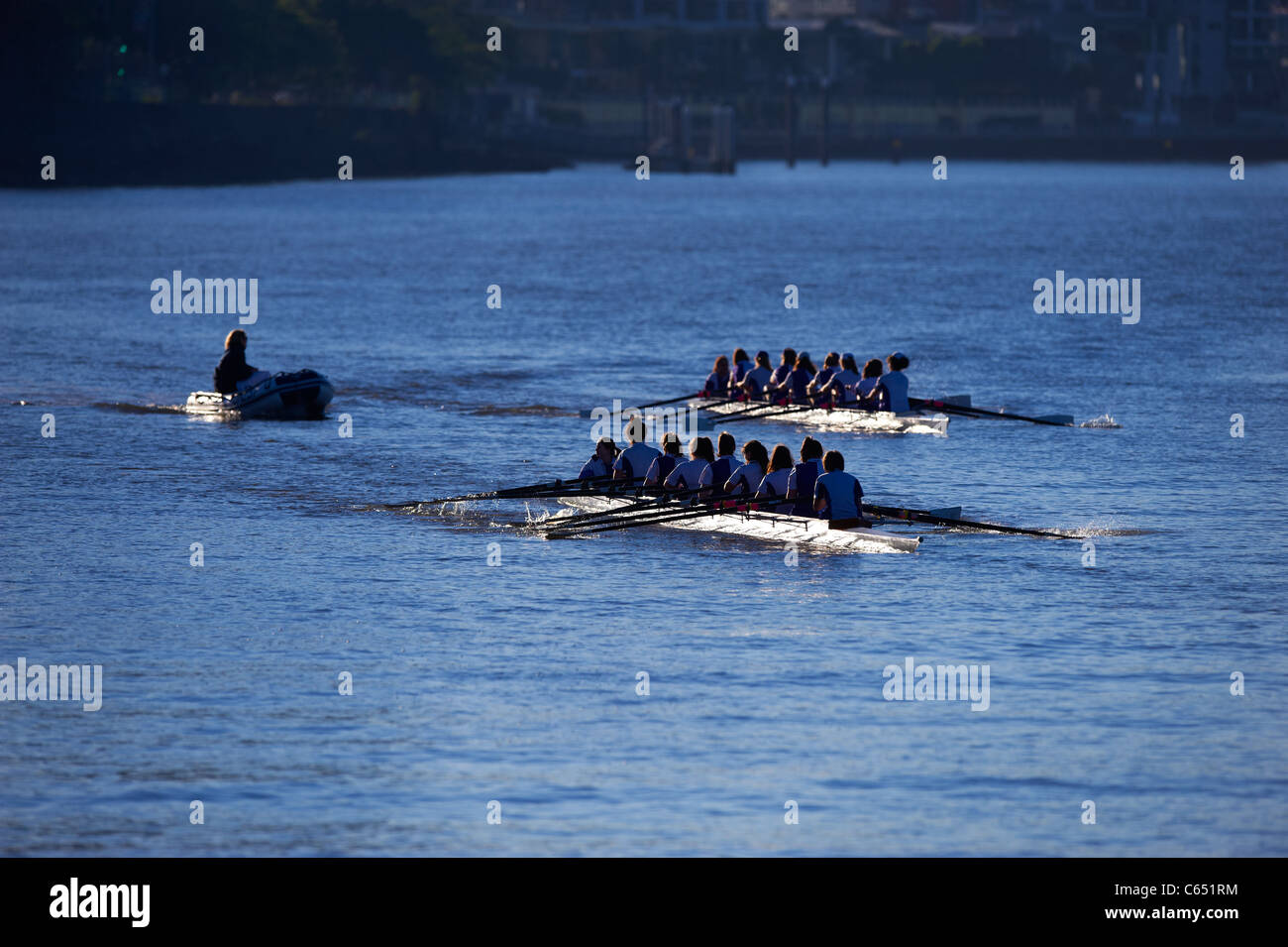 Rowing 8's on the Brisbane River Queensland Australia - Stock Image