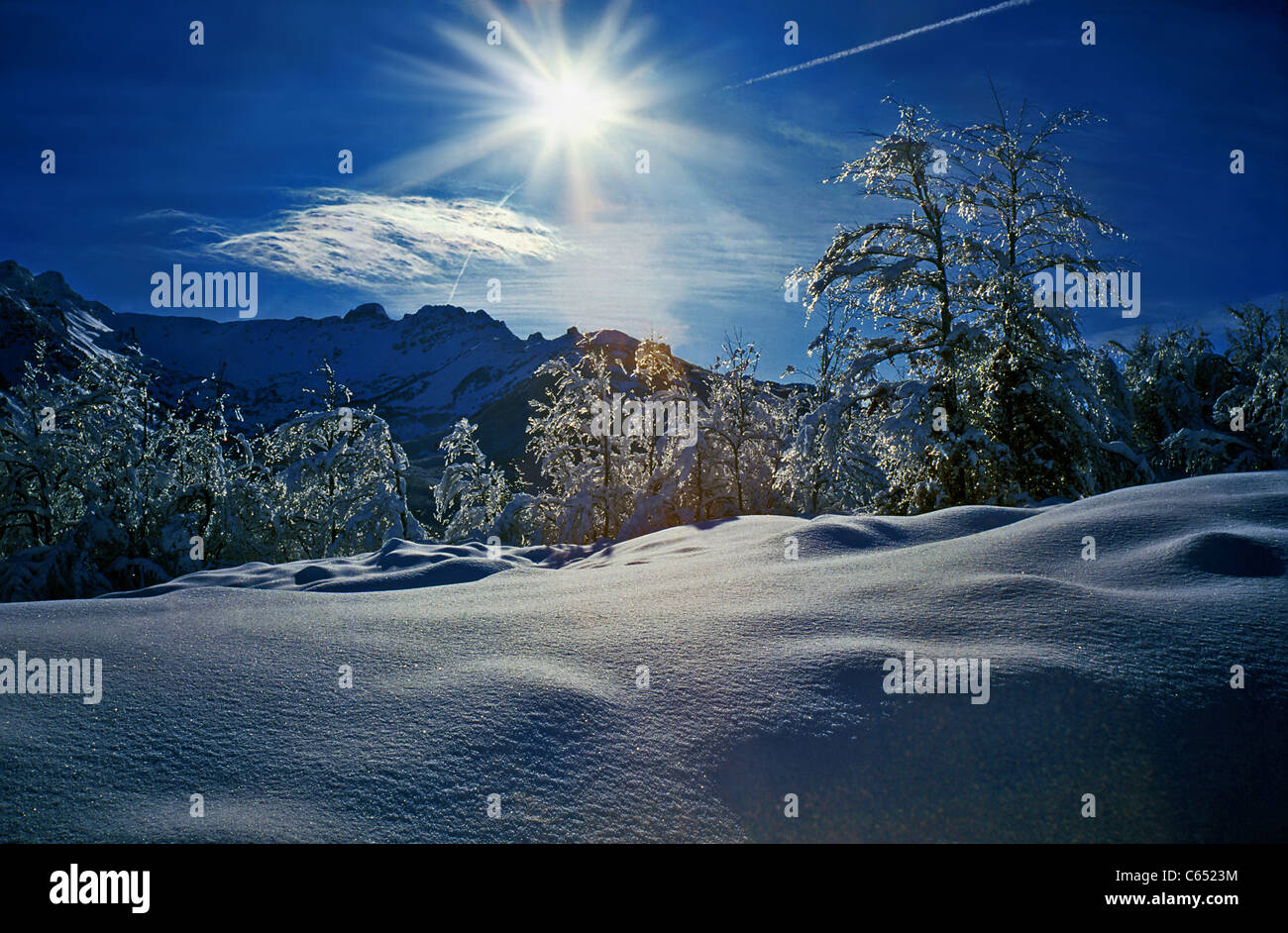 Winter under the snow. - Stock Image