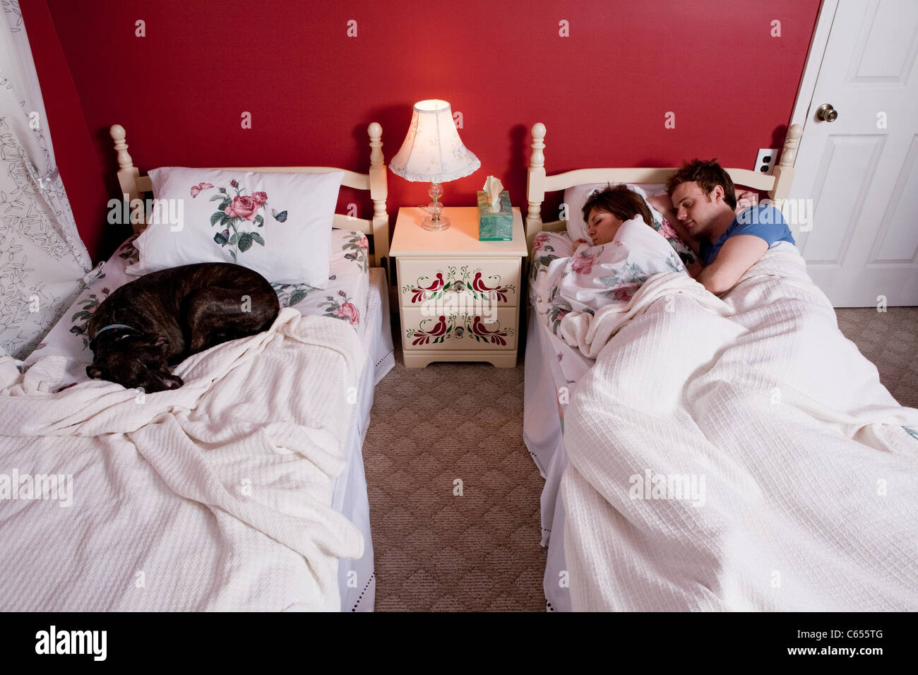 Young couple sharing single bed, dog asleep on other bed - Stock Image