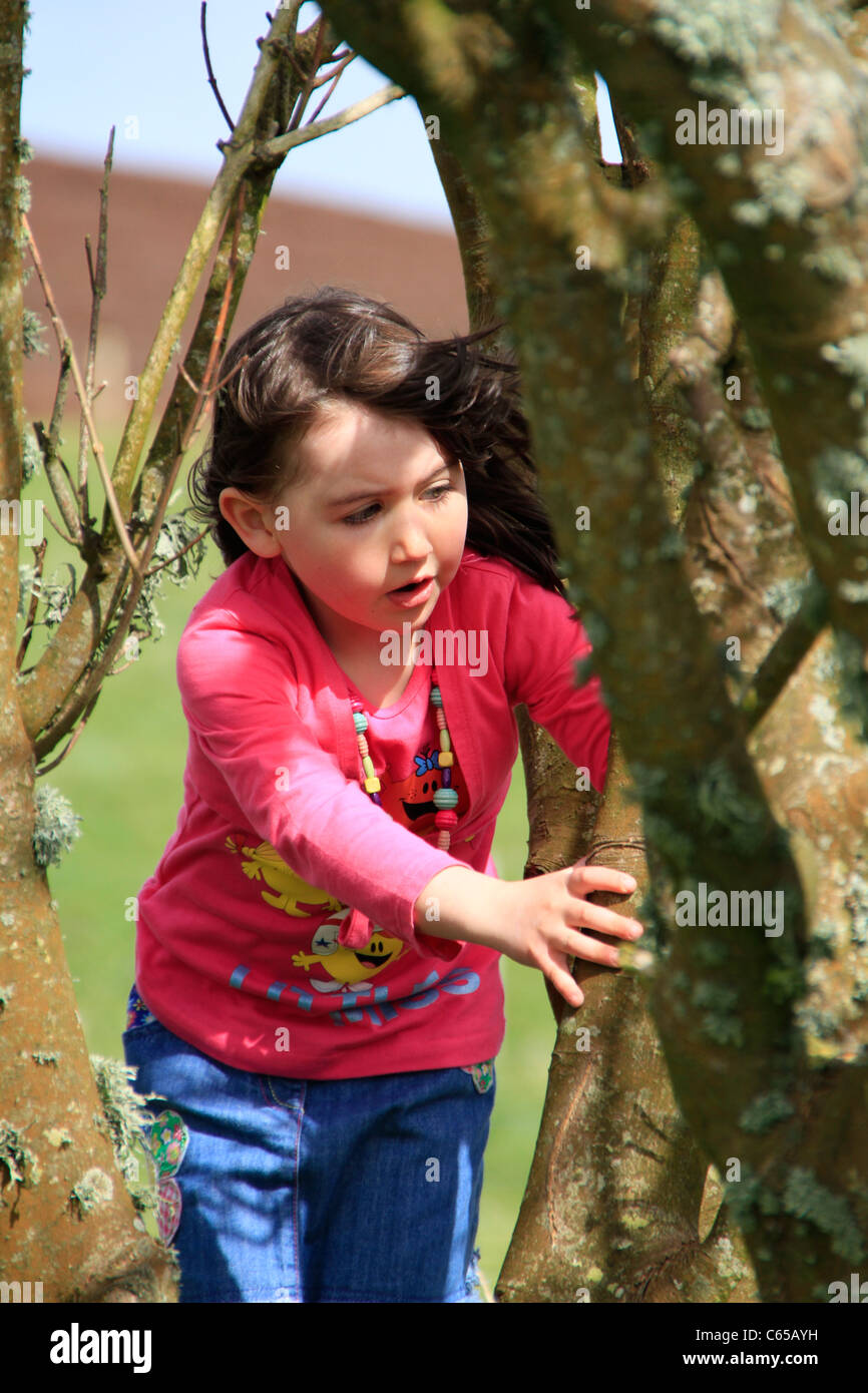 Girl climbing on a tree - Stock Image