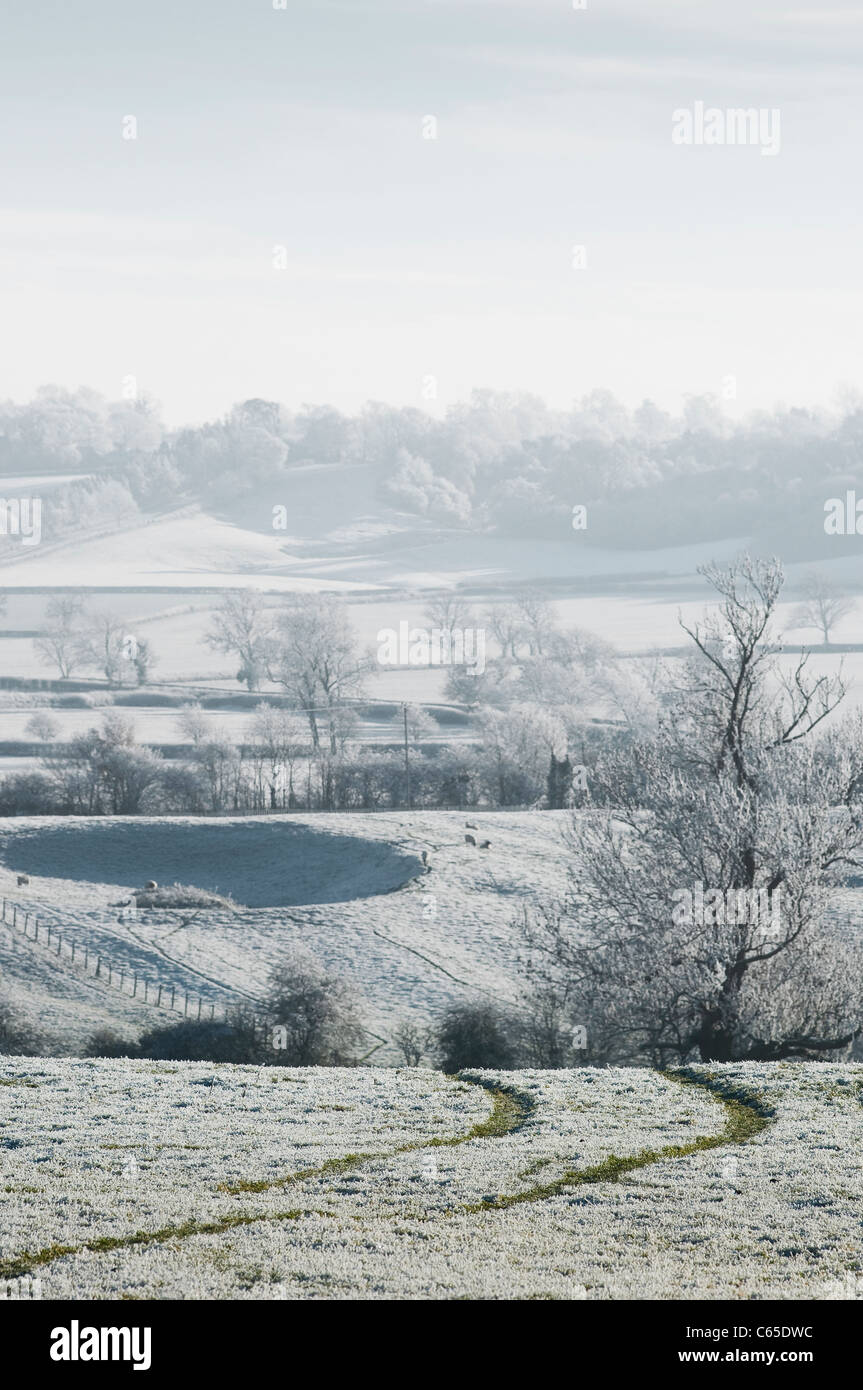 Track leading through a hoar frost covered field in rural England during Winter. - Stock Image