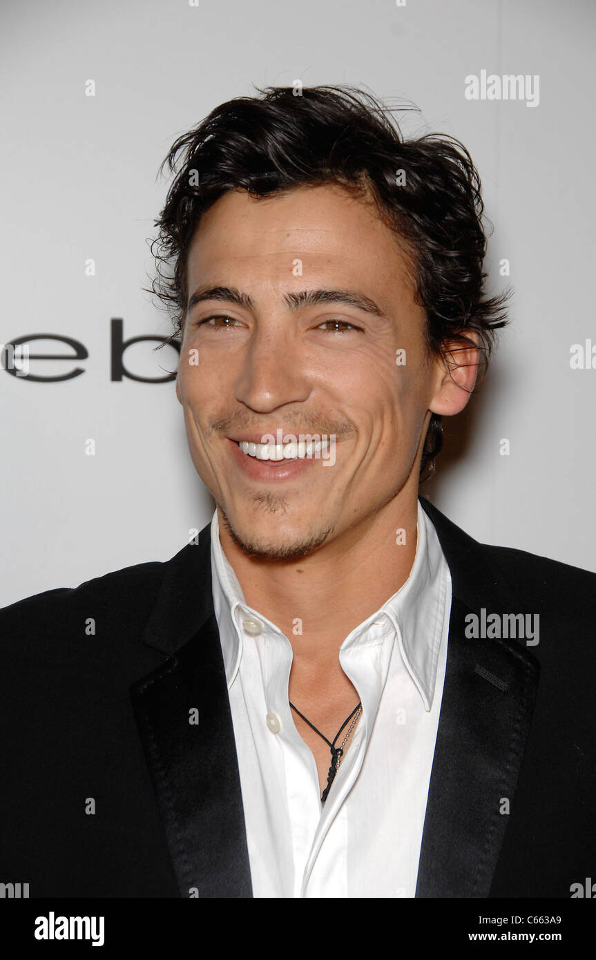 Andrew Keegan at arrivals for LOVE WEDDING MARRIAGE Premiere, Pacific Design Center, Los Angeles, CA May 17, 2011. Stock Photo