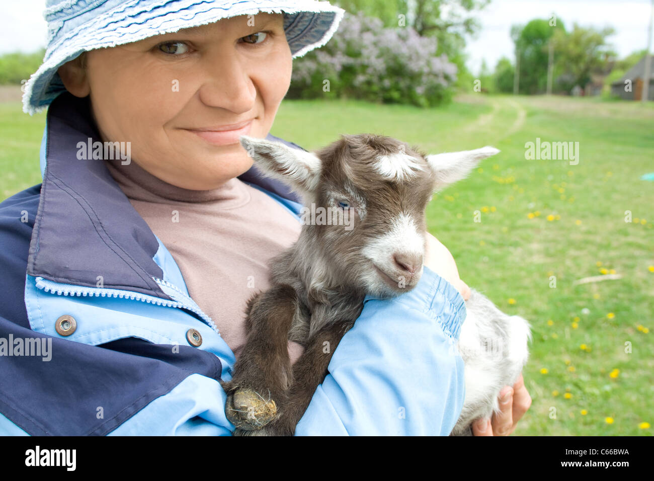 Portrait of elderly woman holding on hands young goat. - Stock Image