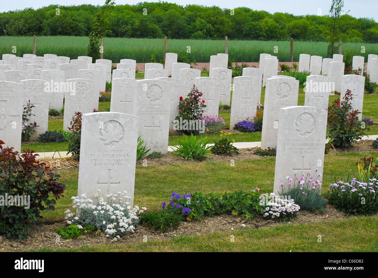 Graves in the Australian National Memorial in Northern France - Stock Image