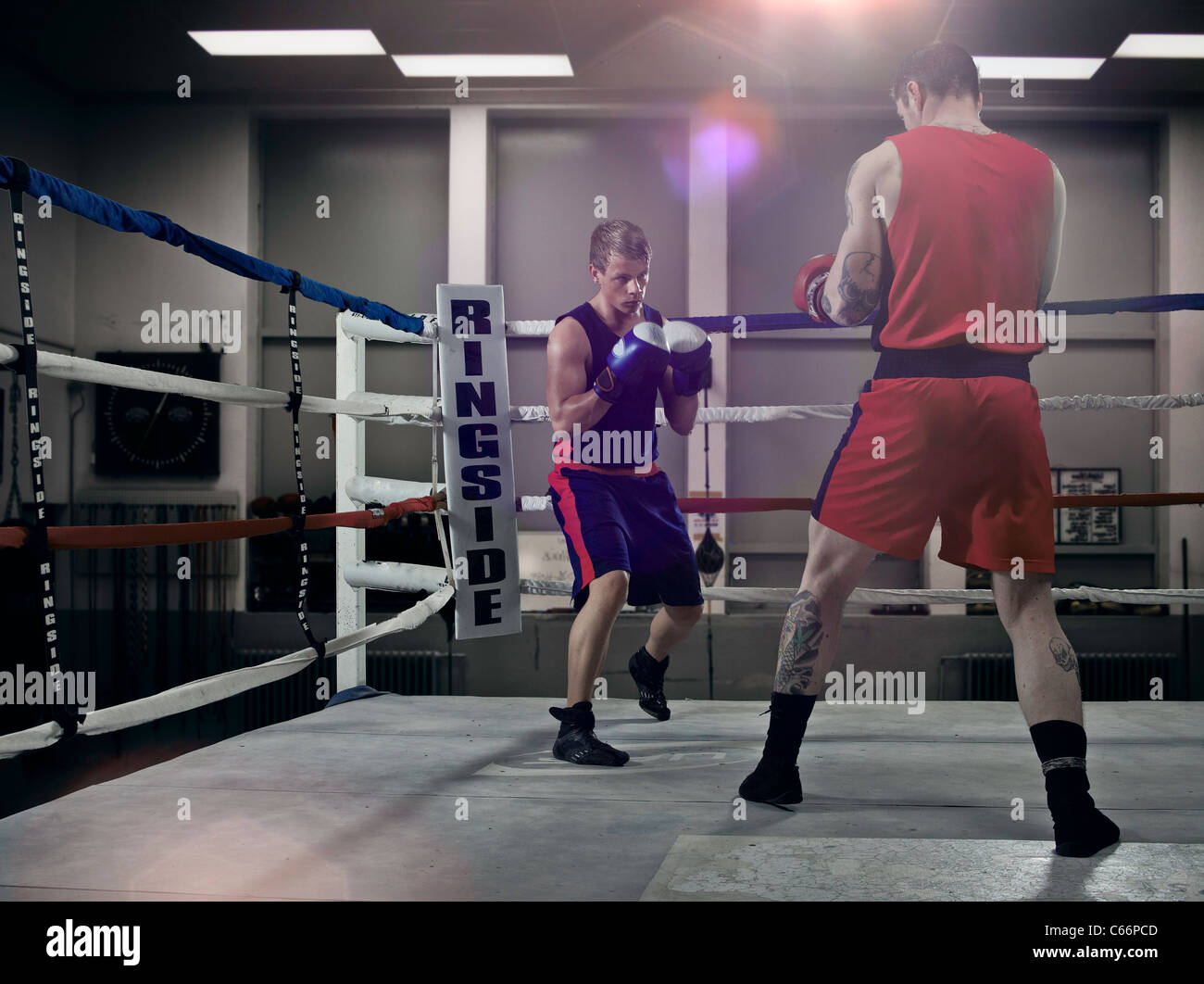 Boxers fighting in ring - Stock Image