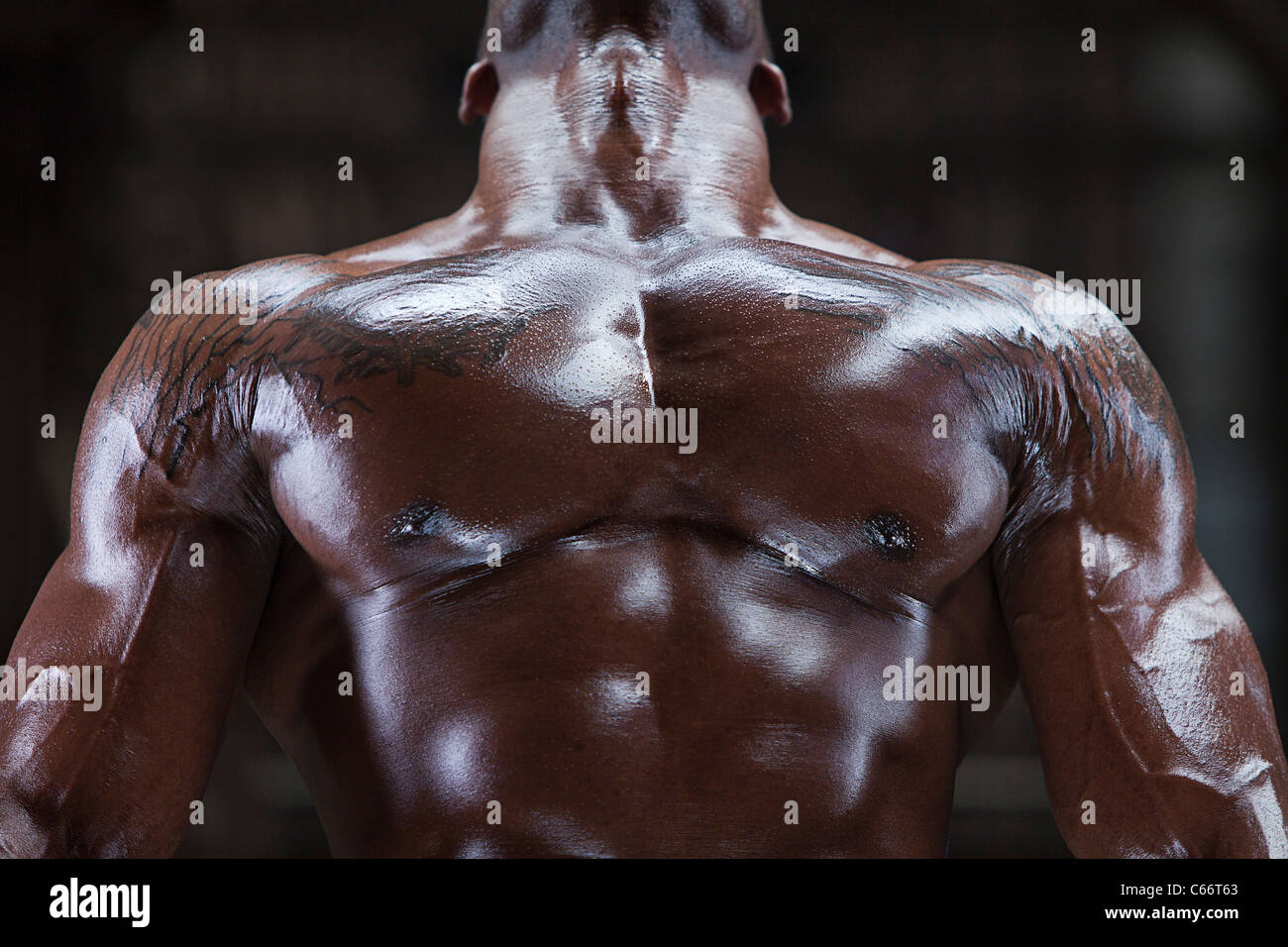 Chest Muscle Stock Photos Chest Muscle Stock Images Alamy