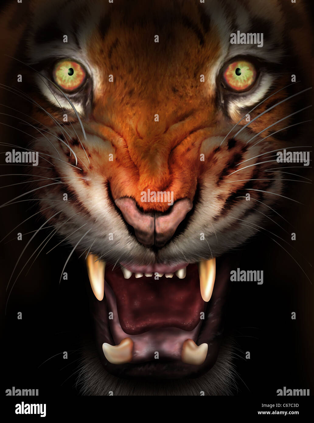 Wild tiger emerging from the dark shadows - Stock Image
