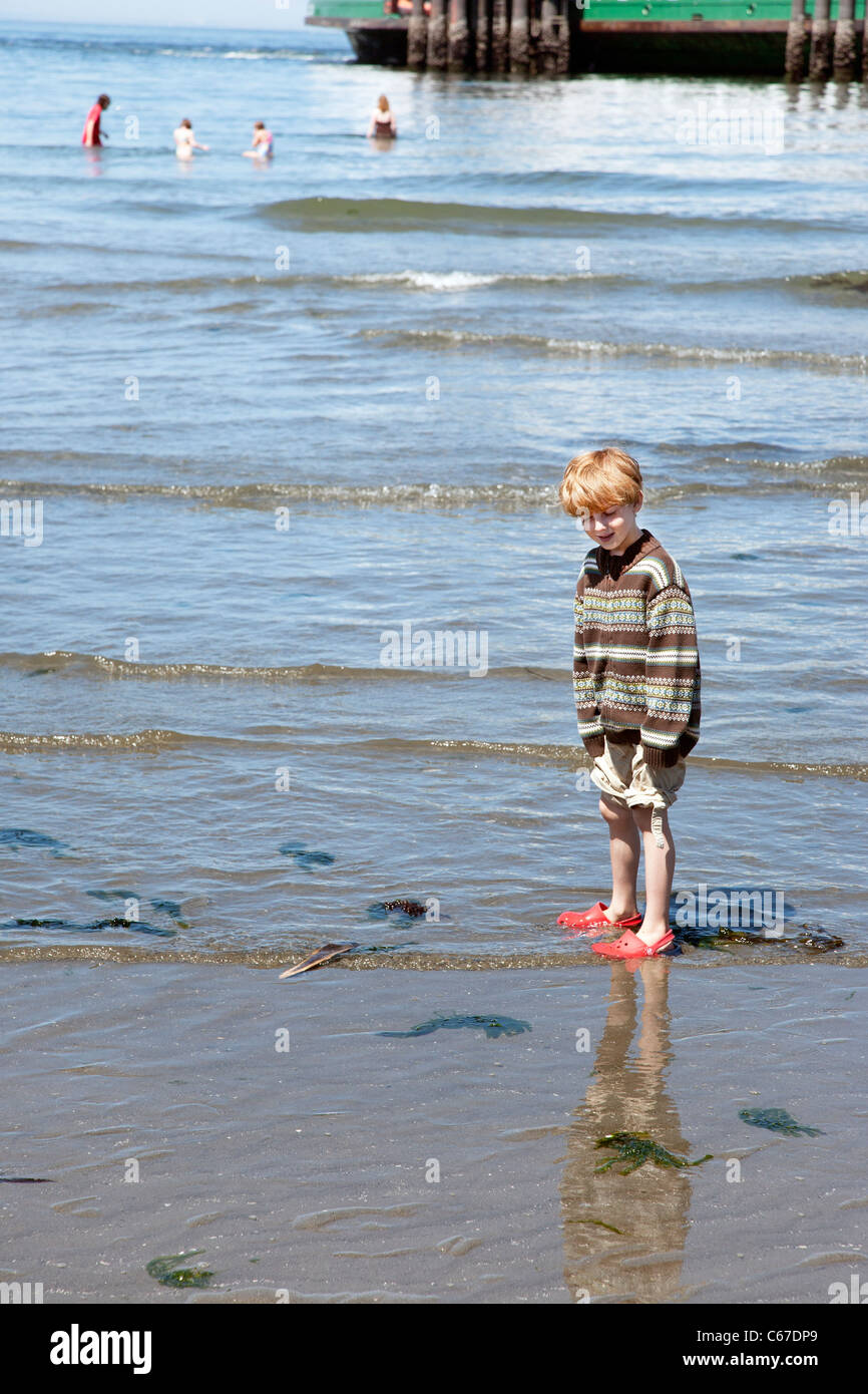 small boy with mop of strawberry blond hair wearing red crocs plays happily in shallows next to ferry slip Edmonds Stock Photo