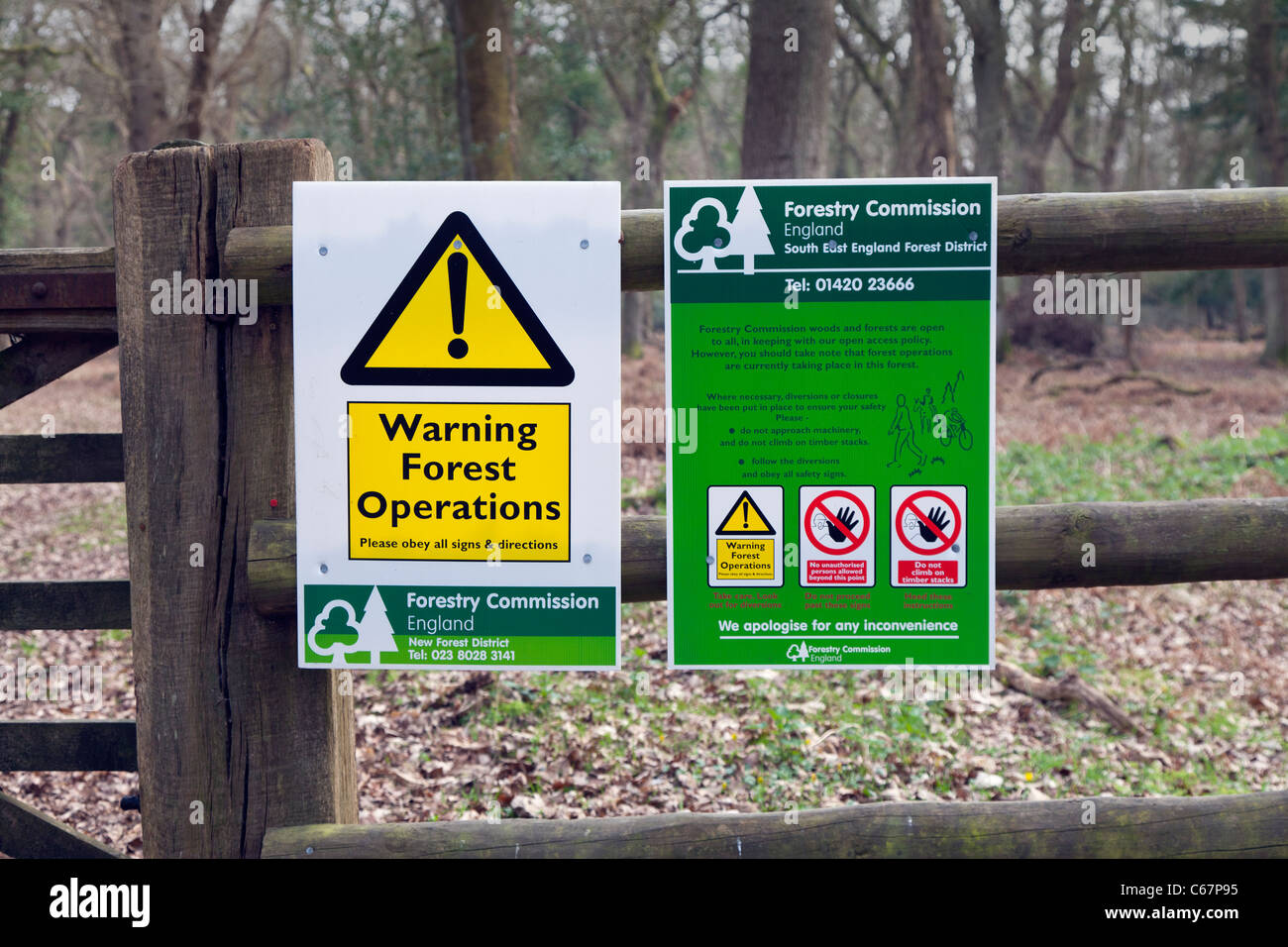 Forestry Commission Forest Operations Warning Sign fence trees No access Tree Felling polite notice information - Stock Image