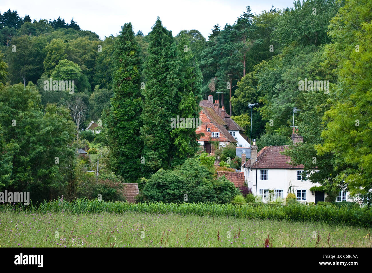 Country houses near Guildford, Surrey, UK - Stock Image